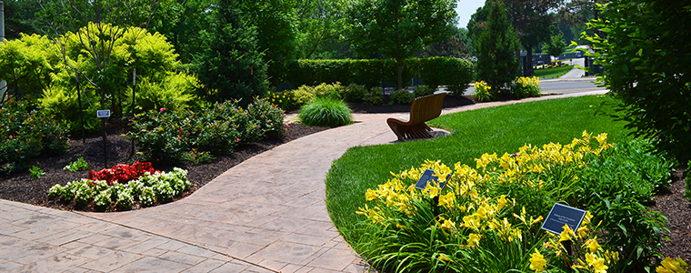 landscaping 1_pageheader